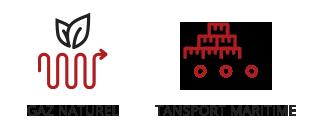 Vogel & Vogel • Nos compétences • gaz naturel • transport maritime